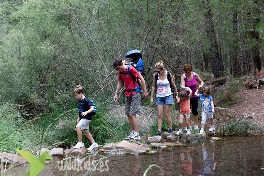 wildkids-senderismo con niños (2)