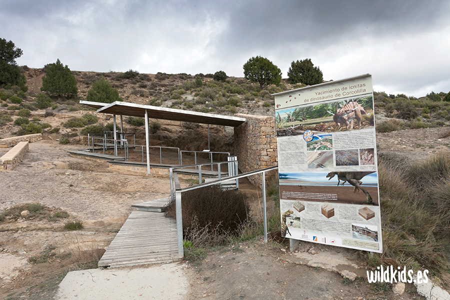 Valencia en familia - Museo paleontológico Alpuente
