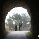 Ruta con niños al Faro del Albir