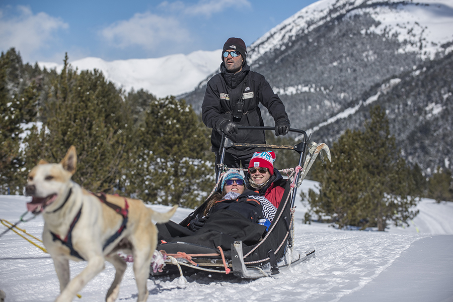 Andorra en invierno - Mushing