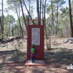 Excursión con niños al Campamento maqui