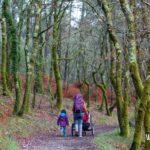 Viajar en familia: Camino de Santiago