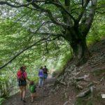 Excursión con niños en el Pirineo navarro- Molino del infierno